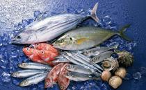 五种常吃的鱼的营养价值