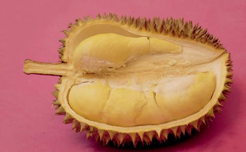 【食材】吃不完的榴莲该如何保存