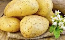 美容佳品土豆 对女人的5大好处