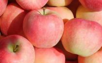 4步教你挑出好吃苹果
