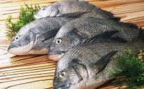 活鱼活吃并不好 鱼要怎么吃才健康