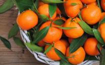 秋天吃橘子有6大好处