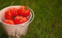 女性九种抗衰老神奇食物 越食越美
