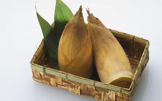 春笋富含多种营养元素 春笋的做法有哪些
