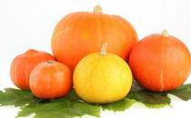 南瓜的营养价值高 但不能与6种食物同吃