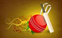 板球是什么?板球运动对于健身的益处