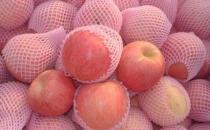 苹果有什么营养?苹果皮有营养吗?