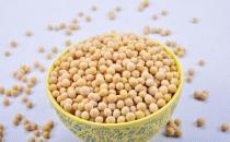 黄豆有什么功效 黄豆的功效与副作用