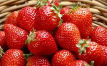 如何挑选草莓?冬季选购草莓小技巧