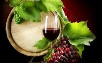 法国葡萄酒的历史你知道吗
