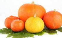 南瓜的营养价值高但不能与6种食物同吃