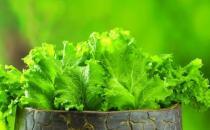 冬季排毒吃什么好?11种食物吃掉体内毒素