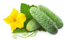 春季吃黄瓜营养又健康