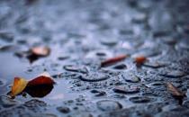 夏季多雨季节饮食注意有方法