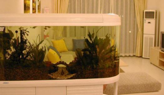 鱼缸设计效果图