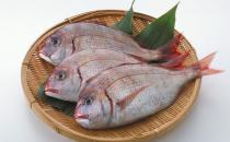 鱼类的5大功效你知道吗?