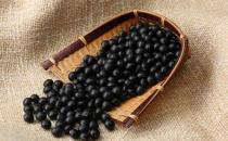 黑豆都有哪些营养价值呢