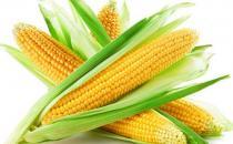调节内分泌失调的7类食物推荐