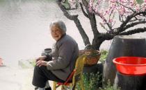 老子活到160岁的长寿秘方