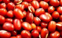 春季祛湿吃什么好?10种祛湿食物推荐