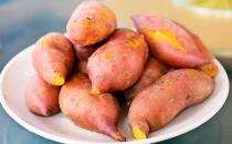 红薯购买时要注意的二个重点