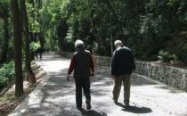 不适合老人的散步方式