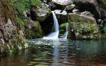 户外旅游求生技巧:如何在野外寻找水源