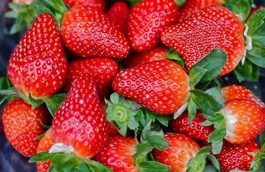 春季适合女人吃的四种水果
