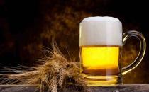 喝啤酒的危害以及注意事项