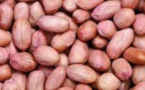 男士养生 花生豆浆可预防脂肪肝