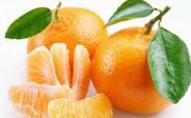 适合春季养生的五种食材