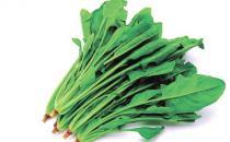 春季养生保健9种蔬菜