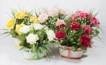 仿真花卉的选购知识和保养方法