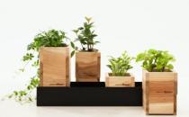 花盆的搭配知识和保养方法
