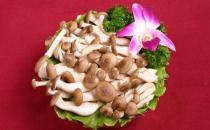 蟹味菇的营养价值 蟹味菇的做法大全