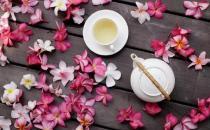 花草茶的功效与作用 花茶的种类搭配