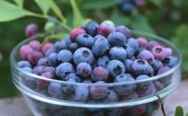 吃蓝莓有什么好处?蓝莓能预防癌症