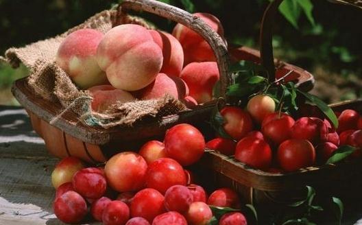 几款好吃的蒸煮水果食疗方