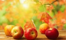 苹果打蜡致癌传言不实