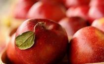 吃什么水果能够清热化痰