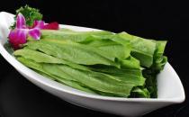 油麦菜怎么吃最有营养