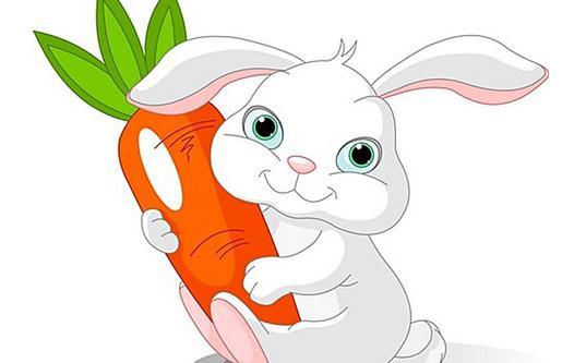 吃白萝卜有哪些好处?白萝卜的养生吃法
