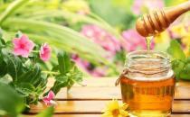 教你5招辨别优质蜂蜜