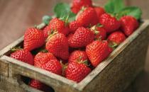如何辨别过量激素的草莓?