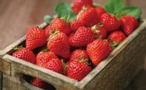 挑选草莓的方法 如何选购草莓?