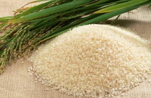 用塑料瓶存大米可以預防生蟲