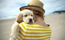养宠物能够克服孤独感