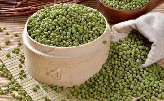 秋季养生食谱:绿豆红枣粥