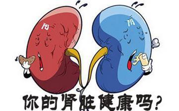 【肾虚】肾虚的表现_肾虚吃什么_肾虚的原因_肾虚的症状有哪些