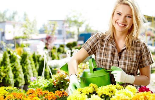 六月份适合种植哪些花?